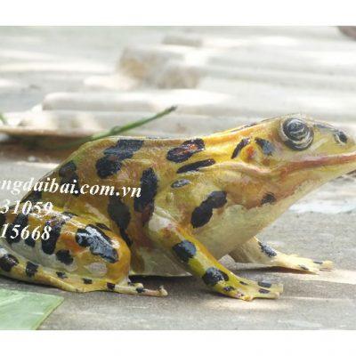 Tượng ếch vẽ màu như thật